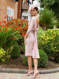 Back image of model wearing Invitations by Veni for Ronald Joyce Drape Neckline Lace Dress in Dusty Pink, Style 991734
